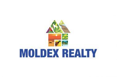 Moldex Realty – Link Guide | Digital Materials