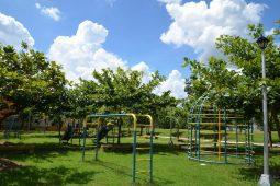 MGI-Playground